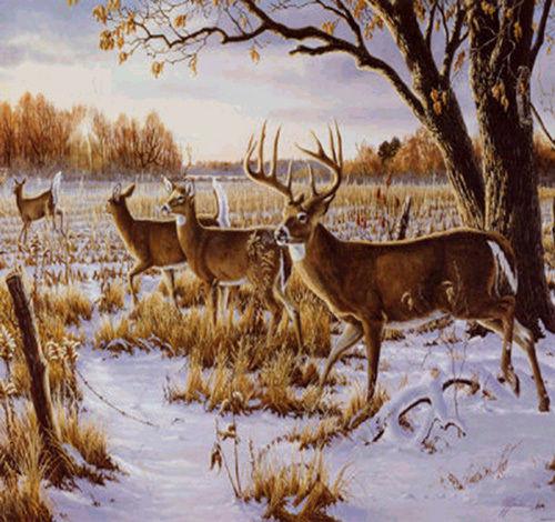 Cautious Crossing Deer Cross Stitch Pattern LOOK