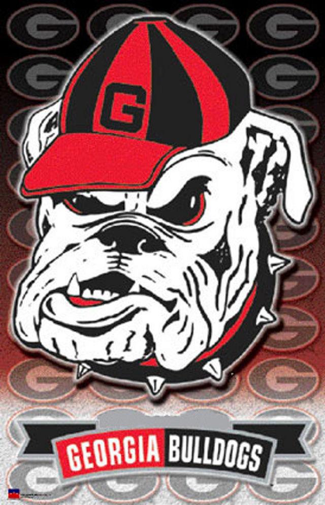Buy Georgia BuLLdogs Cross Stitch Pattern L@@K at AtomicMall.com