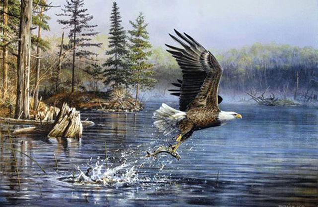 american eagle cross stitch pattern look