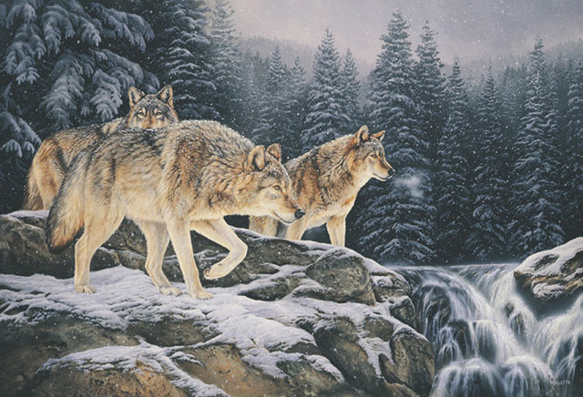 Wolf Spirit Of The Wild Cross Stitch Pattern LOOK DOWNLOAD