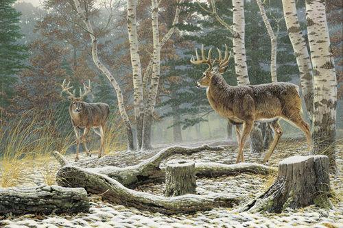 buck hunt cross stitch pattern look